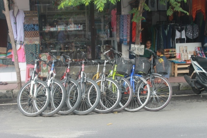I haven't seen a lot of bicycles around Bali before I came to Ubud